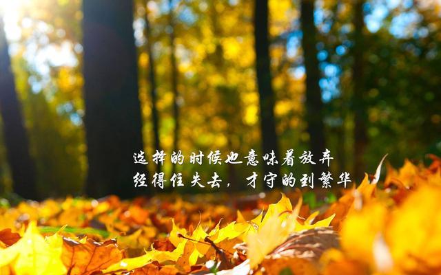 选择的时候也意味着放弃,经得住失去,才守的到繁华